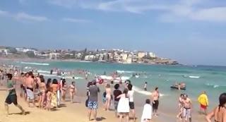 Orderly evacuation following a shark alarm
