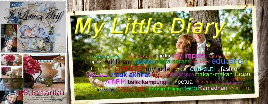 My Little Diary