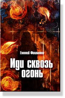 Иди сквозь огонь - книга