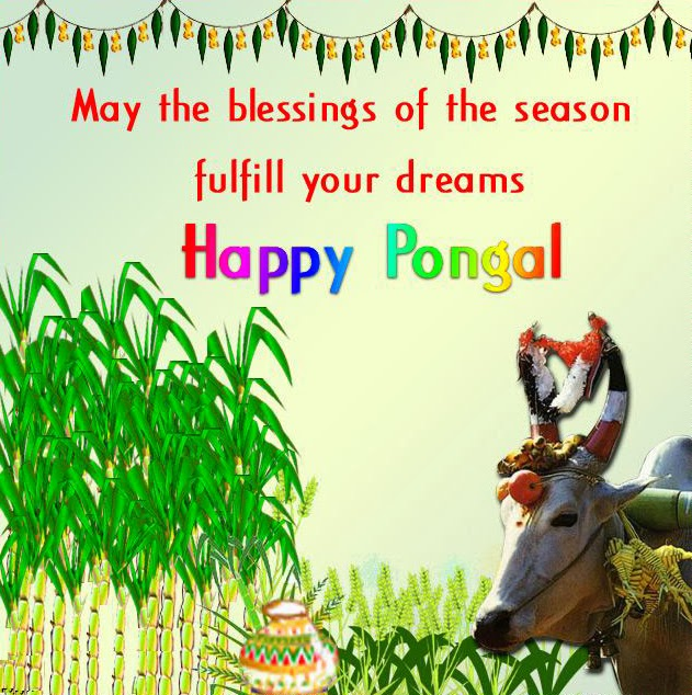 Christian post moonsms happy pongal 2014 sms text message wishes happy pongal 2014 sms text message wishes quotes in english tamil festival thai mattu pongal 2014 m4hsunfo Gallery