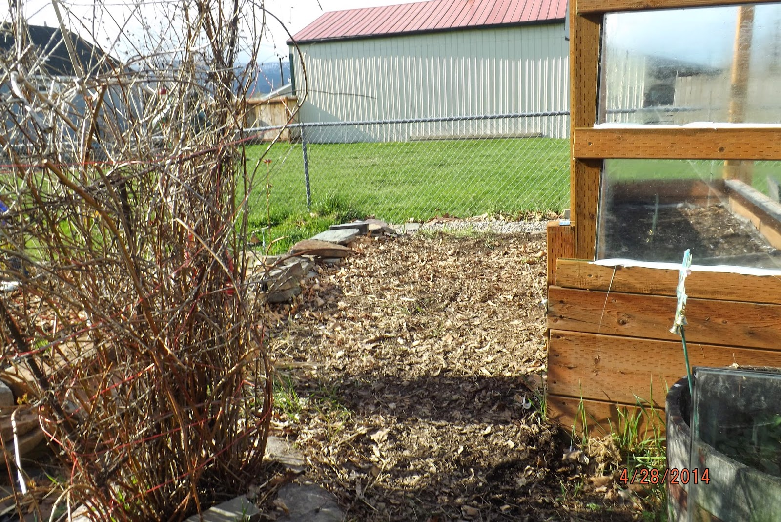 From a simple mind: Straw Bale Garden Phase 2