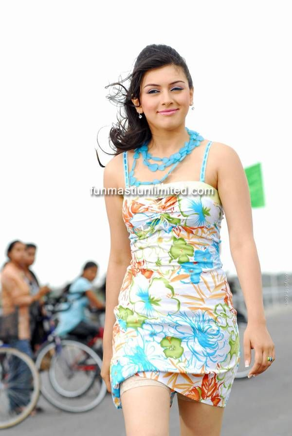 Hansika Motwani Hot Photo