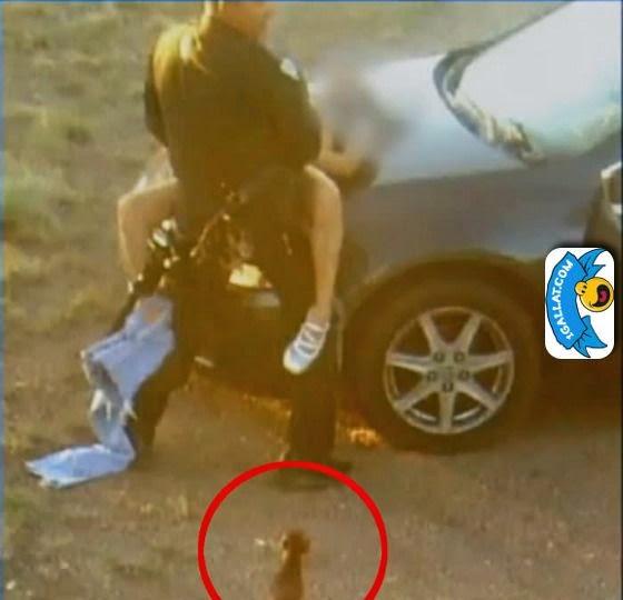 seks polici ne 1gallat.com