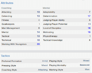 Football Manager Coach Profile Overview