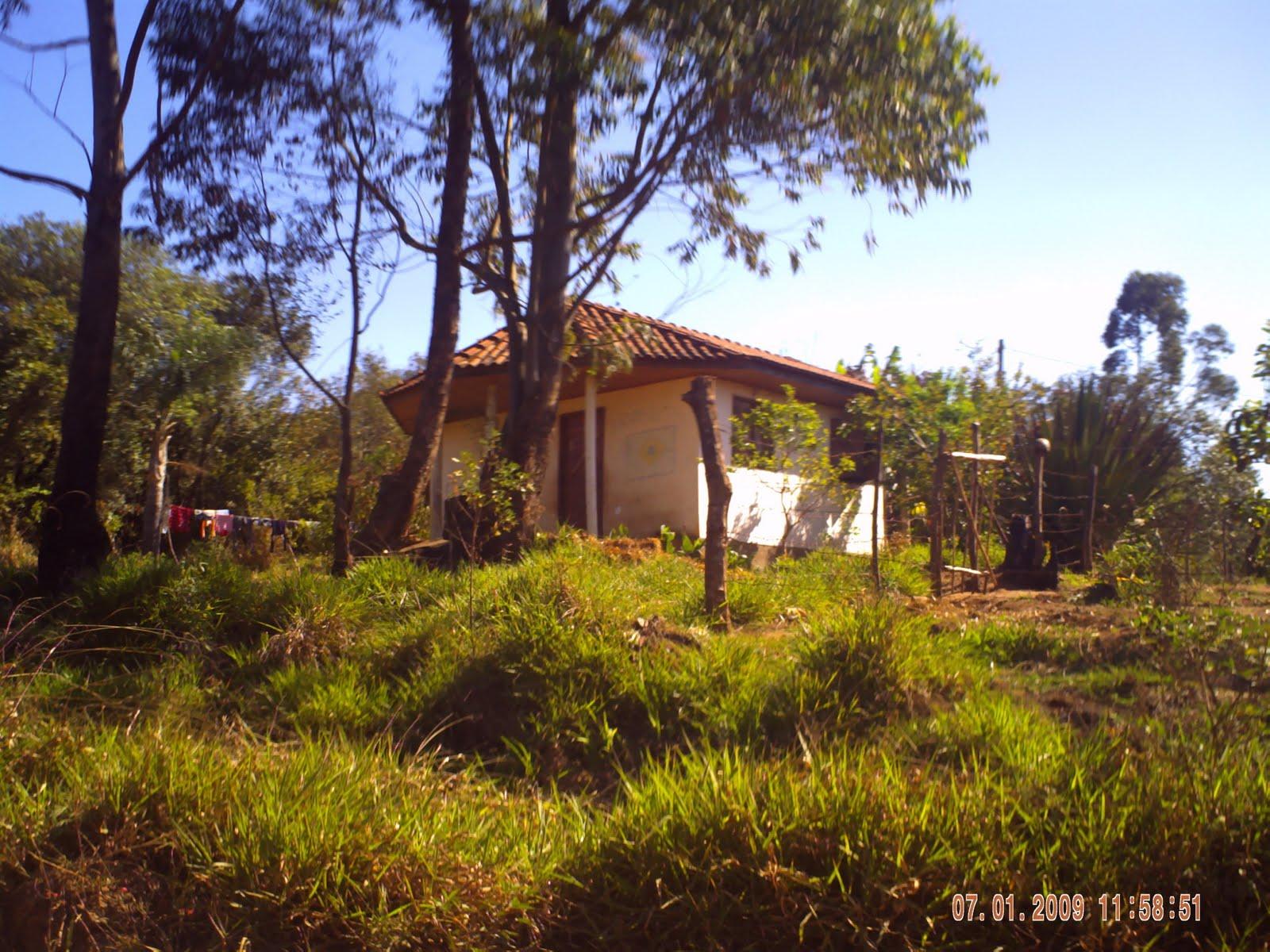 Resultado de imagem para imagem reserva indigena de São Jerônimo da serra pr