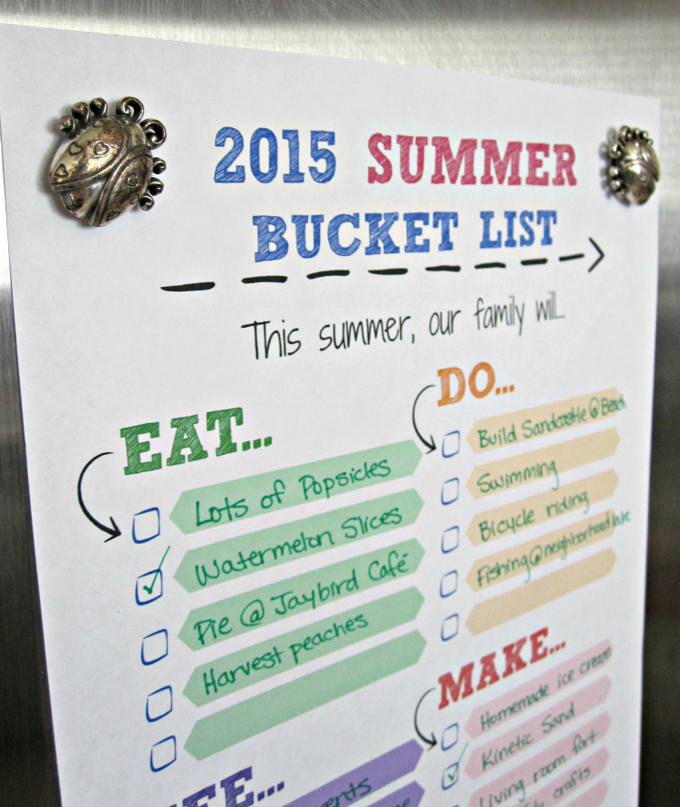 2015 Summer Bucket List Printable hanging on Fridge with Ladybug magnet