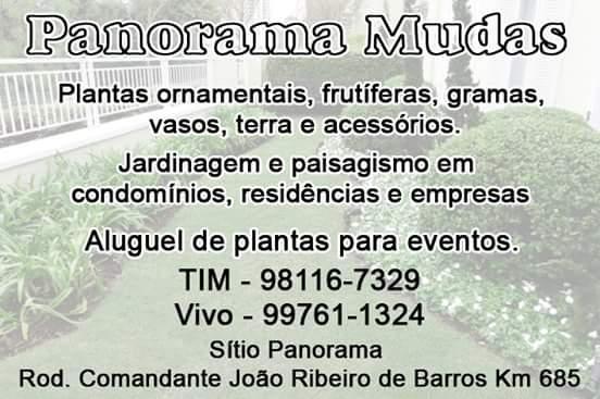 FAÇA A NATUREZA FLORESCER!!