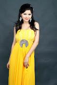 Gehana Vasisth Glamorous Photo Session-thumbnail-19