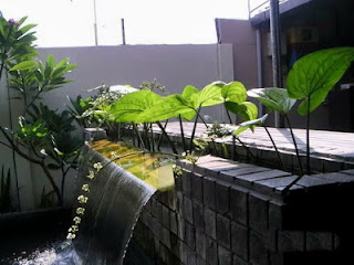 Sistem filter kolam koi