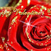 Happy Valentine,s Day E Cards Pictures-Valentine Rose-Flower Day Card For Love-You-Him-Her Photo-Images