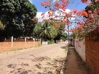 Sítio Gavião, zona rural esquecida.