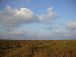 El Serrallo Field and sky