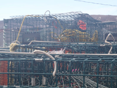 oshan whale watch, lobster trap, cape breton, nova scotia, cabot trail, canada, northern cape breton,