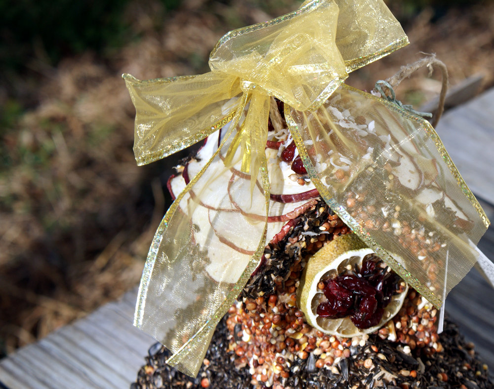 DIY Christmas Gift Idea - Handmade Edible Bird Houses for Garden Lovers and Bird Watchers