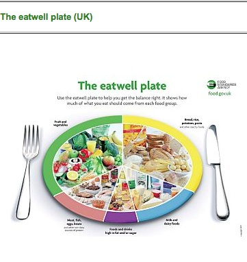 Lighthearted Locavore Dietary Guidelines Food Plates Not Pie