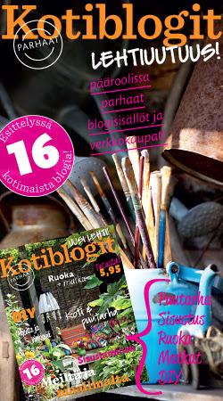 Kotiblogit tidningen 2.7.2014