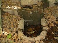 Detall de la Font de Bellveí
