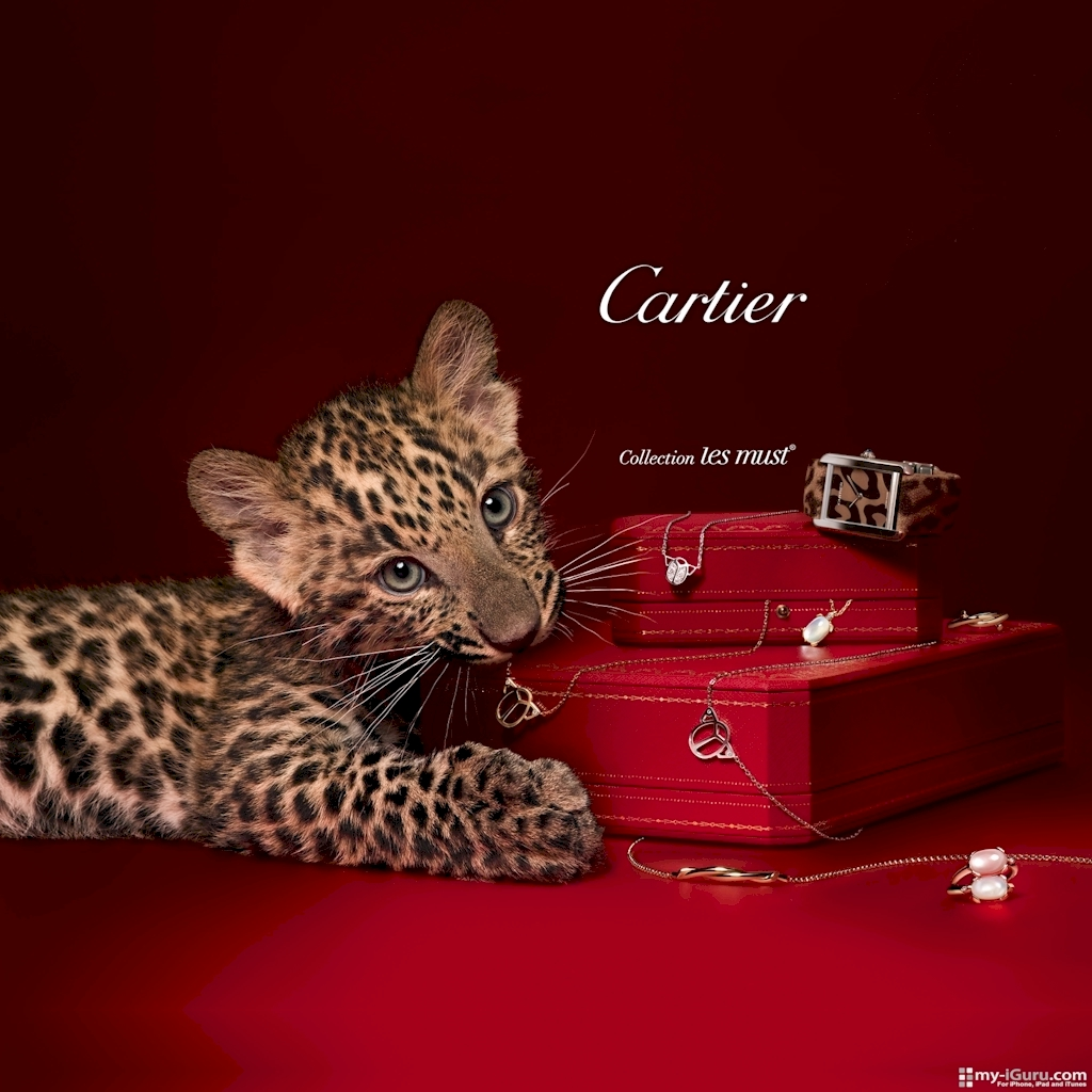Cartier Net Worth
