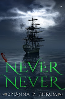 Never Never by Brianna Shum