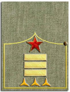 Divisa de bocamanga de coronel de Carabineros del EPR con mando de CE