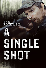 A Single Shot (2013) [Vose]
