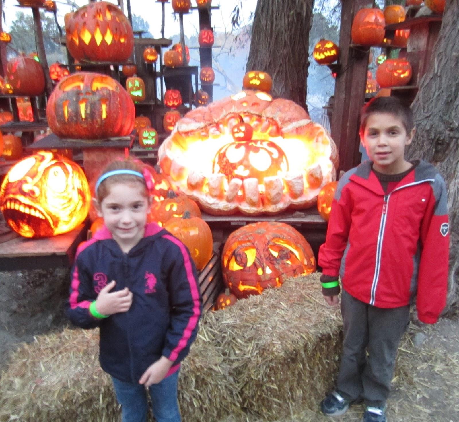 Evan and Lauren s Cool Blog 10 16 13 Roger Williams Park Zoo Jack