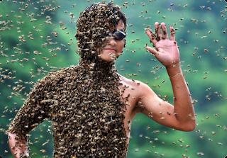 China Bee Man title=