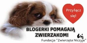 http://brokatwspreju.blogspot.com/2014/04/wspoprace-blogowe-cel-charytatywny.html