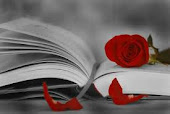 "La rosa de mi amiga Ana "" campanilla """
