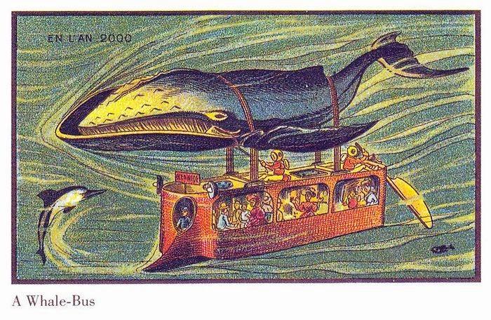 Autocarro Baleia