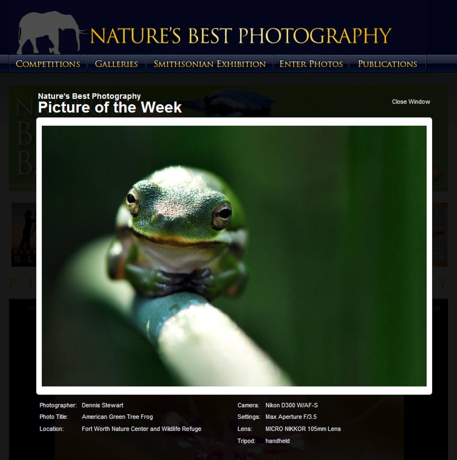 Pic of the Week - Nature' Best