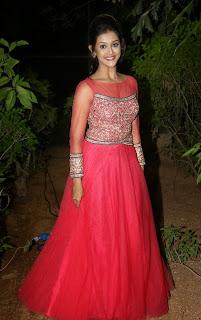 Actress Pooja Jhaveri Picture Gallery at Bham Bolenath Audio Release  17.jpg