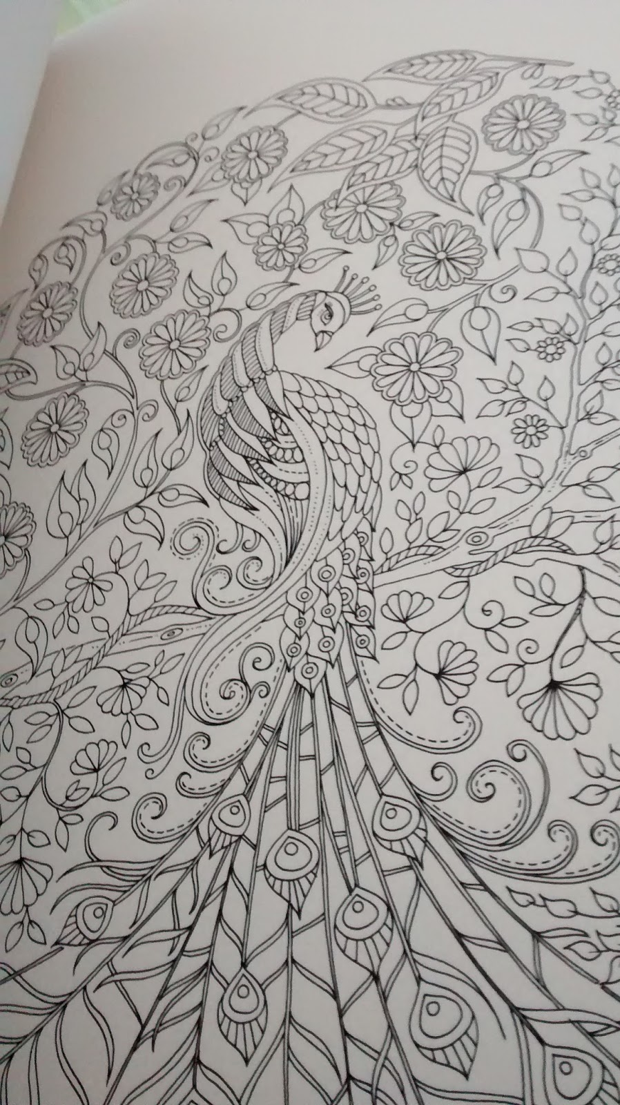 how long must it have taken to produce some of these theyre honestly amazing heres one of my favourites a peacock i have started colouring in - My Secret Garden Coloring Book