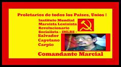 Click TWITTER  Instituto Mundial Marxista Leninista Revolucionario Socialista-IMLRS-