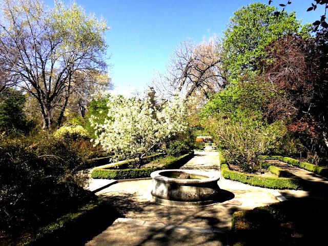 Madrid jardin botanique
