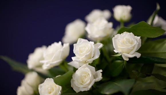 Josephians Of The Seventies Condolences To Cyril Moa And