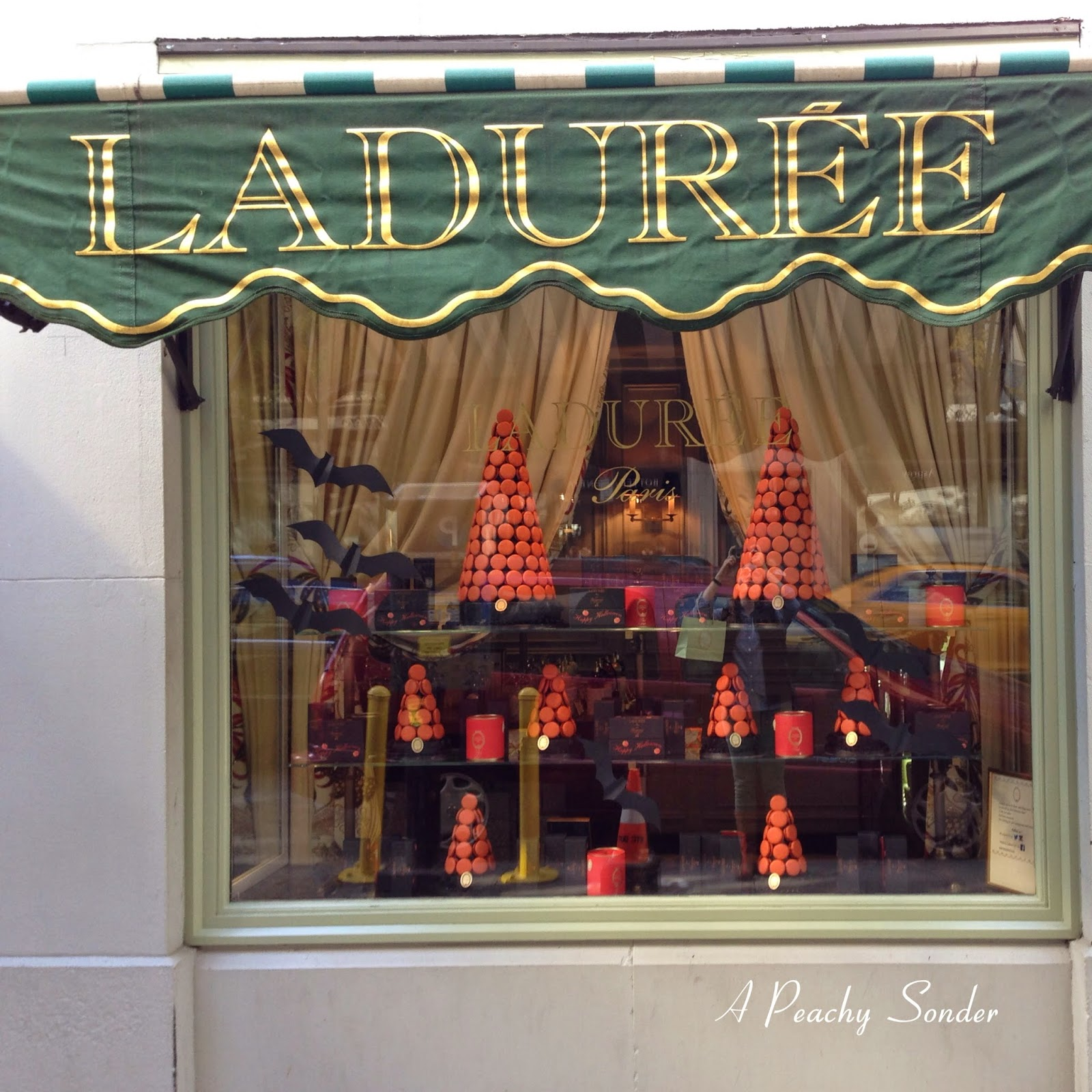 halloween, window, laduree