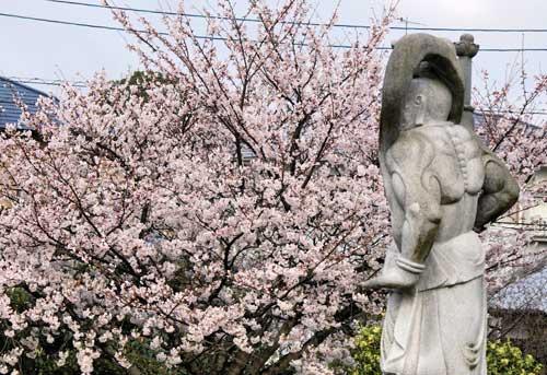 A Walk Around Kyushu, Chikuzenmaebaru to Imajuku.