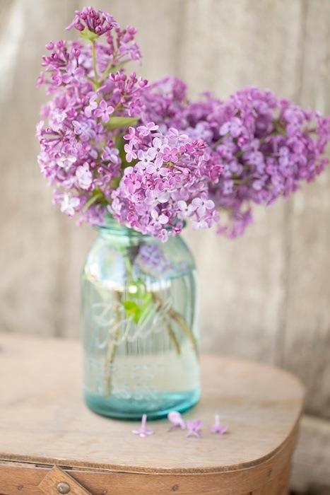 Cottage Flavor Flowers Artfully Displayed