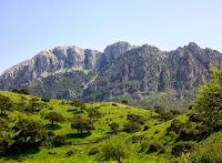 RURALBUS: un autobus per lo sviluppo rurale della Sardegna