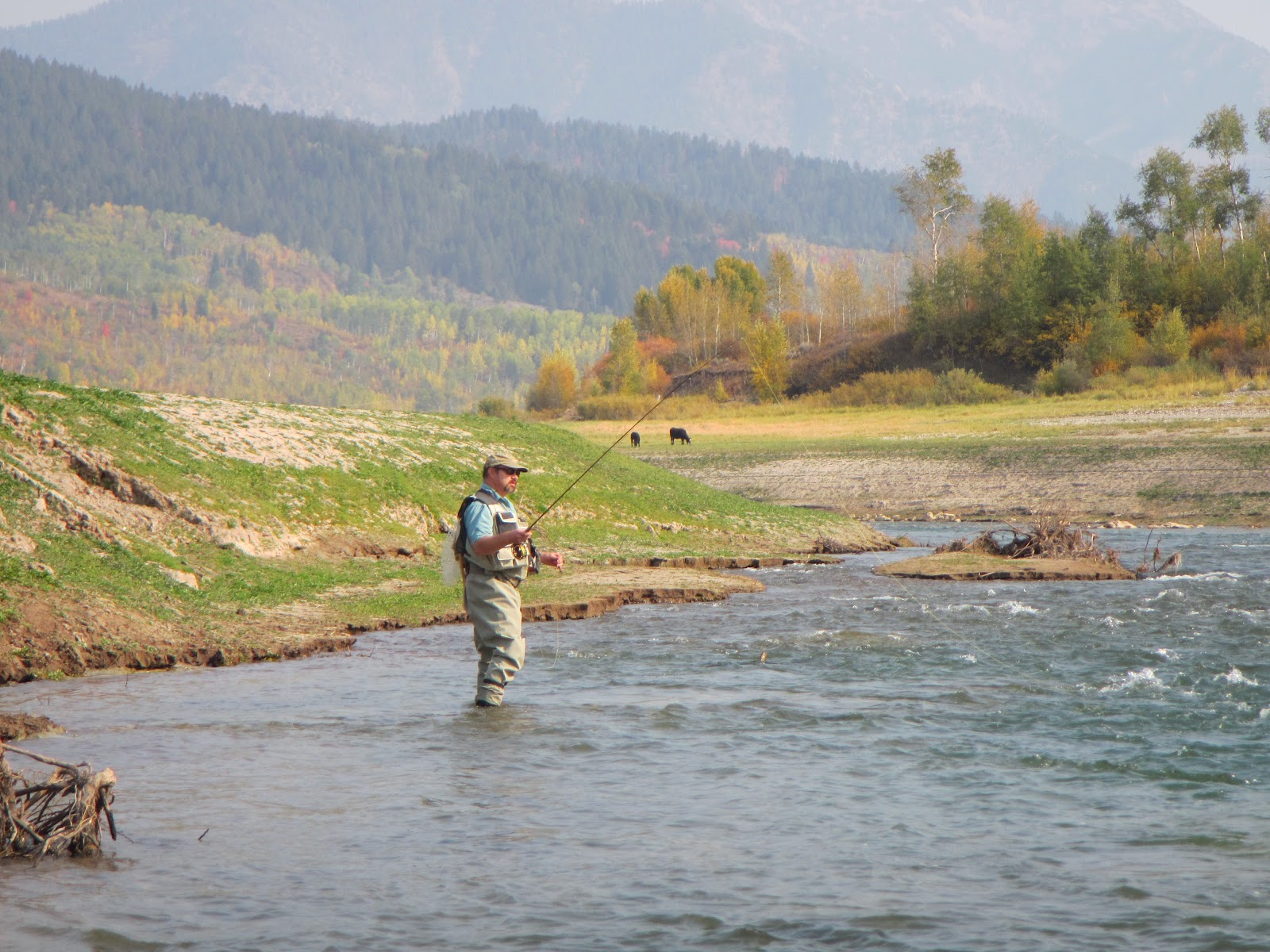 Fly fishing the west with howard fine spotted snake river for Salt river fishing