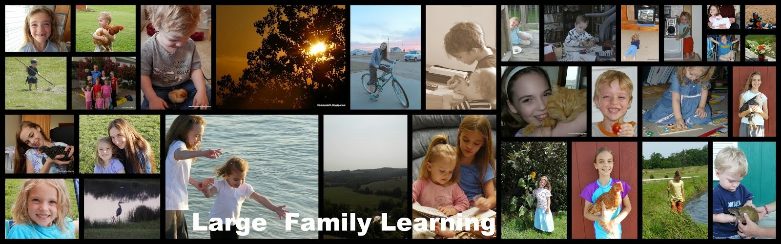 Large Family Learning