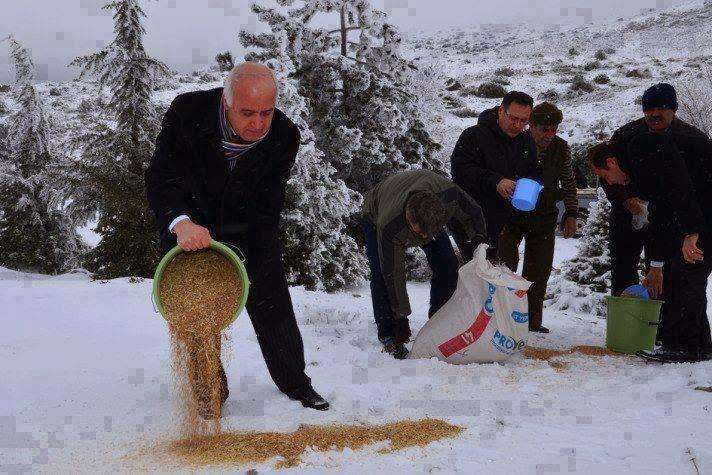 Budaya Hebat Masyarakat Islam Turki Menabur Gandum Atas Gunung