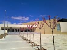 I.E.S. nº  3  Las Fuentes Villena(Alicante)