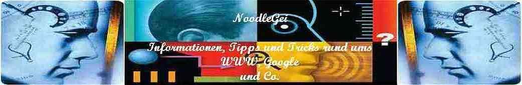 NoodleGei - Das WeltweiteWeb, Web x.0 und das Google-Universum & Co.