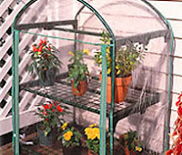 How to Buy Quality Greenhouses Cheap