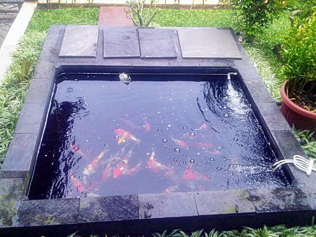 Panduan membuat kolam ikan koi ~ Dunia Air