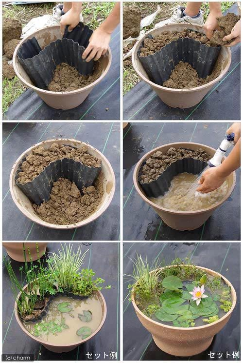 Great Pics How To Make A Miniature Pond In A Pot