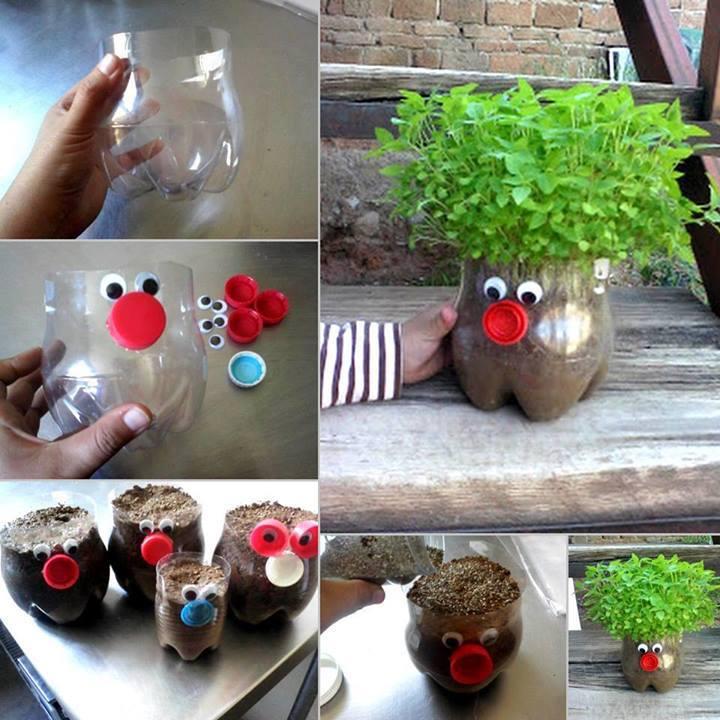 Muitas vezes Sexta Arteira: horta feliz em garrafa de pet - Pitacos de Lua KY96
