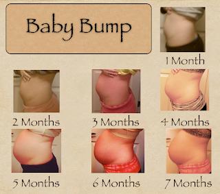 Baby thompson belly progression